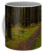 Hoh Rainforest Road Coffee Mug