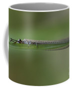 Hold On Tight - Damselfly Coffee Mug