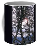 Holding On To The Sun Coffee Mug