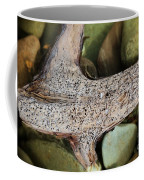 Holey Driftwood Coffee Mug