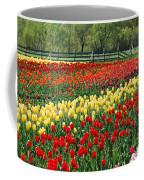 Holland Tulip Fields Coffee Mug