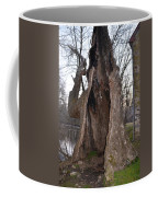 Hollow Tree At Mather Mill Coffee Mug