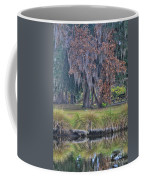Holly Hill Park Coffee Mug