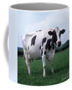 Holstein Coffee Mug