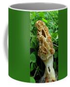 Holy Morel Coffee Mug