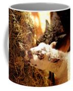 Home On The Range Coffee Mug