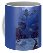 Homing Into The Rookery, Dry Bar, 1975 Coffee Mug