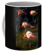 Homosassa Springs Flamingos 5 Coffee Mug