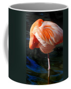 Homosassa Springs Flamingos 7 Coffee Mug