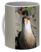 Homosassa Springs Waterfowl 21 Coffee Mug