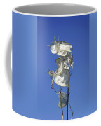 Honesty Seed Pods Coffee Mug