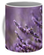 Honey Bee In Lavender Coffee Mug