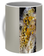 Honey Fungus Coffee Mug