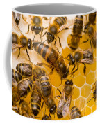 Honeybee Workers And Queen Coffee Mug