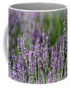 Honeybees On Lavender Flowers Coffee Mug