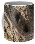 Hooded Merganser In The Knot Hole  Coffee Mug
