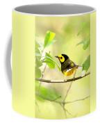 Hooded Warbler - Img_9274-009 Coffee Mug