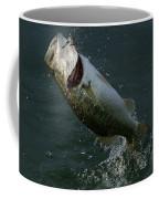 Hooked Coffee Mug