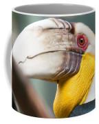 Hornbill Bird Portrait Closeup Coffee Mug