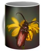 Horned Beetle Coffee Mug