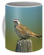 Horned Lark Eremophila Alpestris Coffee Mug