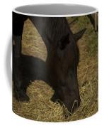 Horse 34 Coffee Mug