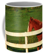 Horse And White Fence Coffee Mug
