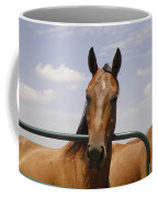 Horse Beauty Coffee Mug