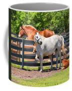 Horse Family Coffee Mug