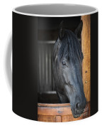 Horse In Stable Coffee Mug by Elena Elisseeva