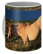 Horse In Wildflower Landscape Coffee Mug