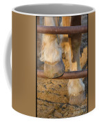 Horses 4 Coffee Mug