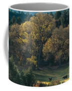 Horses In A Backlit Field With Fall Colored Trees Sedo Coffee Mug