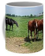 Horses In The Pasture Coffee Mug