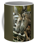 Horses Looking Through The Fence Coffee Mug