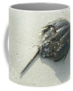 Horseshoe Crab - Limulus Polyphemus Coffee Mug