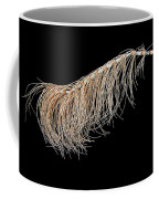 Horsetail On Black Coffee Mug
