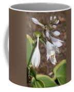 Hosta Coffee Mug