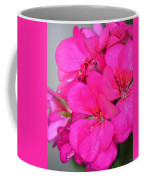 Hot Pink In February Coffee Mug