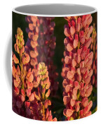 Hot Pink Lupines From My Mother's Garden Coffee Mug