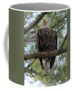 Hot Summer Perch Coffee Mug