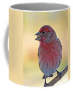 House Finch II Coffee Mug