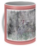 House Finch - Kiss Me Coffee Mug