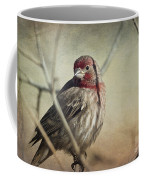 House Finch Two Coffee Mug