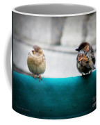 House Sparrows Coffee Mug