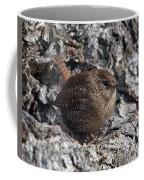 Winter Wren Dsb188 Coffee Mug