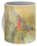 Housefinch Pair With Texture Coffee Mug