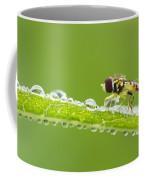 Hoverfly In Dew Coffee Mug
