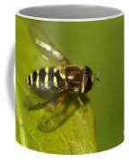 Hoverfly On A Leaf Coffee Mug