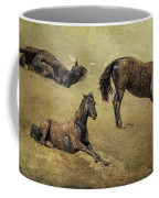 How A Black Horse Turns Brown - Pryor Mustangs Coffee Mug